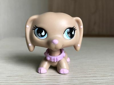 Littlest Pet Shop DACHSHUND Sportiest LPS DOG #909 Raindrop Eyes Rare Collcetion