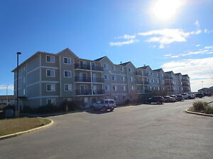 SPACIOUS AND MODERN 2 BDR WESTMORE ESTATES  !!    587-343-6260