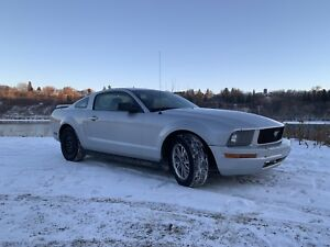 2005 Ford Mustang Ready for winter!