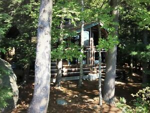 Redstone Lake Haliburton!! Island Cottage for Rent