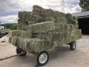 Excellent quality square bales