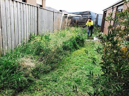 Lawn Mowing Grass Cut Block Slashing