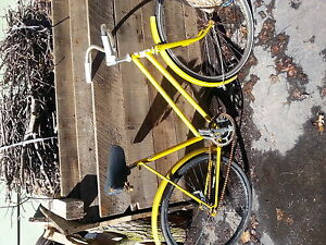 vintage single speed, back break bike