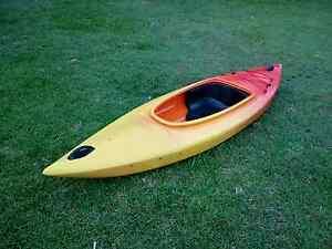 Daintree canoe, kayak Yandina Maroochydore Area Preview