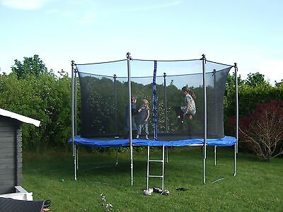Round trampolines have grown in popularity for families