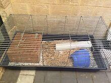 Guinea pig rabbit ferret indoor cage Armadale Armadale Area Preview