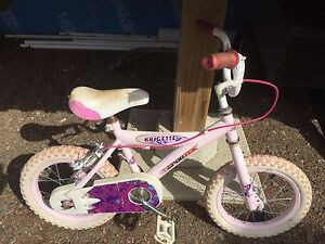 Girls Pink Bike Brigette Bicycle