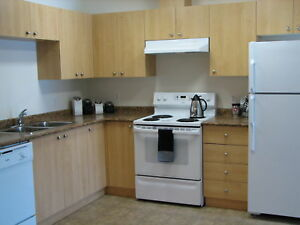 2 Bedroom in Wetaskiwin with insuite laundry - C407, New Carpet
