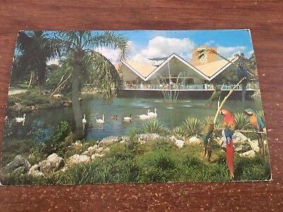 Tampa FL Busch Gardens Hospitality House Postcard 1973