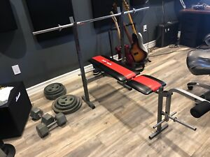 Home Gym Bench Press + Dumbbells