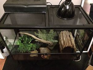 Terrarium for reptiles. ***$175*** EVERYTHING INCLUDED!!