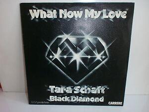Tara Schaft Black Diamond What Now My Love New York City Dream