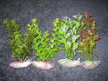 Aquarium ⁄ Fish Tank Artificial Plants Lot for $10 Forrestdale Armadale Area Preview