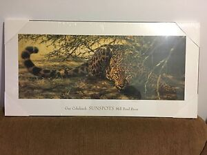 Laminated Art - Leopard - Guy Coheleach