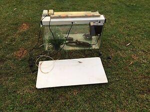 Fish tank + accessories Burnside Maroochydore Area Preview