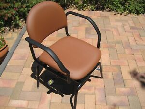 DINING CHAIR for the Disabled - in excellent condition Kambah Tuggeranong Preview