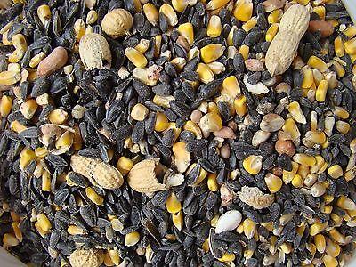 WILD BIRD seed JIMMY'S PREMIUM PEANUT BLEND wildlife food DEER BIRDS SQUIRRELS