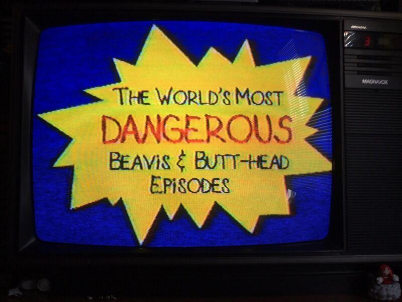 VHS SOLD AS BLANK BEAVIS BUTTHEAD MTV DRAGON BALL Z TOONAMI COMMERCIALS BANNED