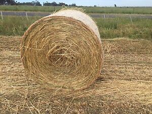 Oaten hay round bales Bulla Hume Area Preview