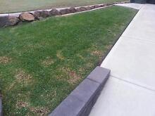Lawn mowing Newcastle 2300 Newcastle Area Preview