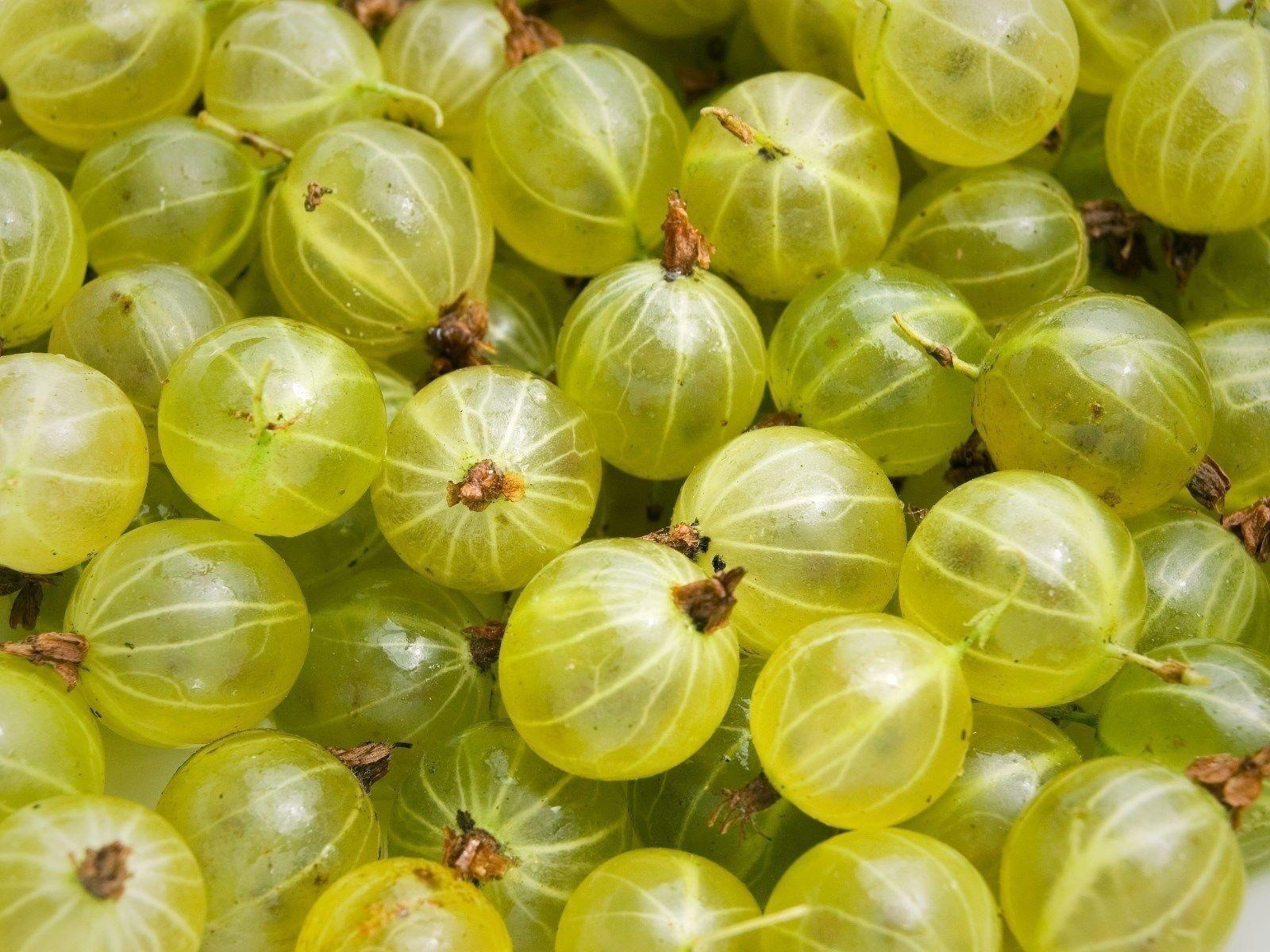Unripe Strawberries 3 Green Goosebe...