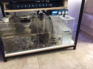 Custom Aquarium Reef Sump