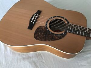 Norman Acoustic Electric Guitar