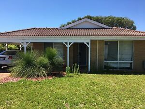 Room for rent. West Busselton Busselton Area Preview