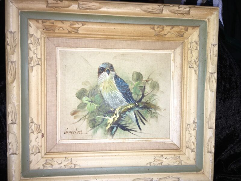 "Art  By GORDON Oil Painting Still Life Sparrowhack Bird 7.5"" By 9.5"" Canvas"