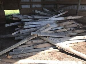 Fence posts ruffly 400