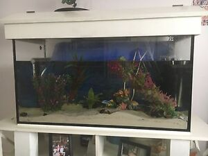 Fish tank for sale Banks Tuggeranong Preview