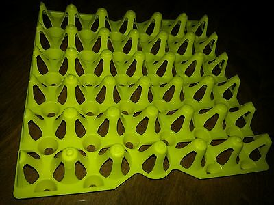 Chicken Egg Trays For Incubator Storage Cleaning. Holds 30 Eggs. Was-30