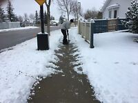 Millwoods Snow Services $100 Xmas Rates