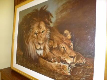 Large Picture of Lion and Lioness Moss Vale Bowral Area Preview