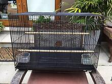 Budgie / Canary / Finch Cages - Near New Earlwood Canterbury Area Preview