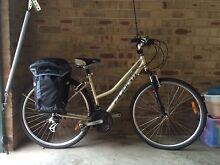 Avanti Women's Bike Greenwich Lane Cove Area Preview