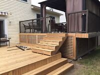 Mark's painting/deck and fences