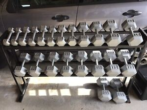 Hex dumbbells with rack  8 - 80 lbs