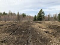 Mulching land clearing logging clean up