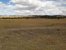 2.45acres vacant rural land Wongan Hills Wongan-Ballidu Area Preview