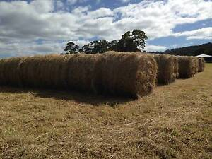 HAY BALES, Round, quality grass hay excellent for horses. Howden Kingborough Area Preview
