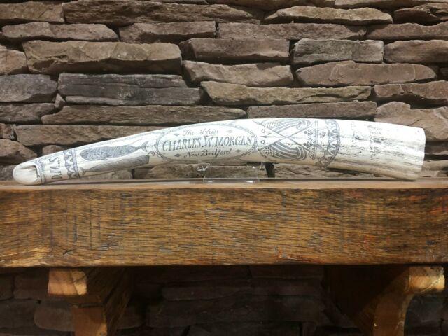 "HISTORIC Scrimshaw Walrus Tusk ""CHARLES W MORGAN"" RESIN  reproduction"