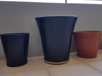 Plant pots - black and terra cotta colour