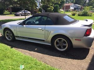 2002 Ford Mustang Convertible - End of season / No room to store