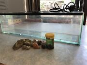 Hermit crab tank and accessories  Banora Point Tweed Heads Area Preview