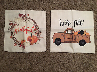 """Set Of 2 Outdoor Waterproof Fall Thanksgiving Orange Patio 18x 18"""" Pillow Covers"""