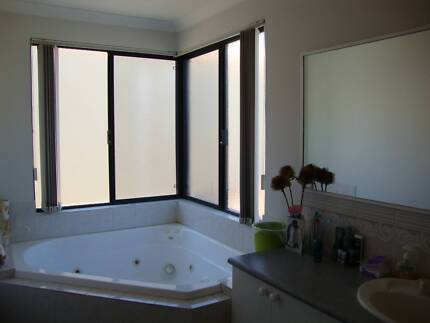 Whole Top Level 4 Yourself-Private Ensuite/Living Room-River View Manning South Perth Area Preview