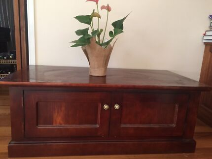 Solid wood unit with 2-side  opening doors as new $ 100  only