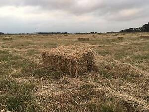 SQUARE HAY BALES Sunbury Hume Area Preview