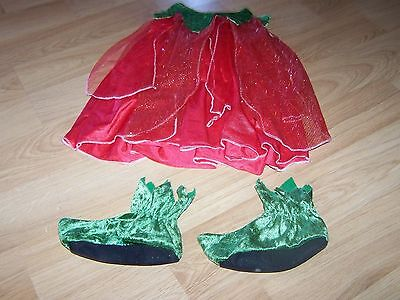 Infant Size 12-18 Months Strawberry Fairy Halloween Costume Dress & Shoes EUC (Infant Halloween Costumes 12-18 Months)
